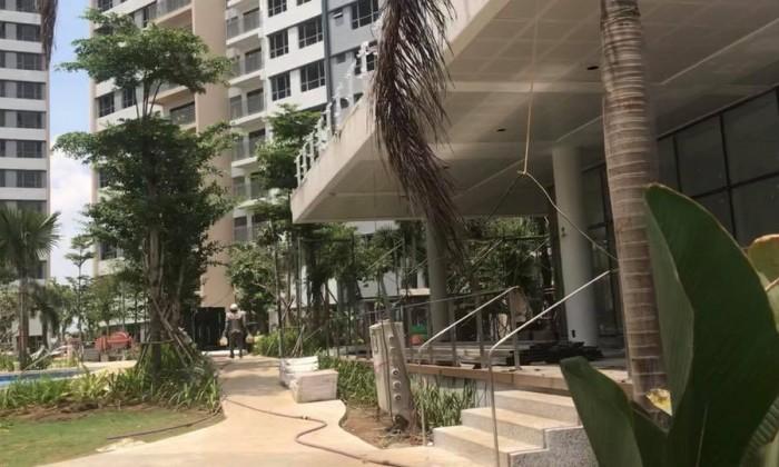 Bán căn hộ Palm Heights, 2 phòng và 3 phòng ngủ. Giá 2,95 và 3,9 tỉ. LH 0909988697