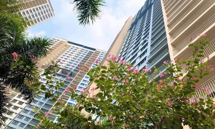 Chuyên chuyển nhượng căn hộ Palm Heights với mức giá rẻ nhất - Liên hệ: 0903147772.
