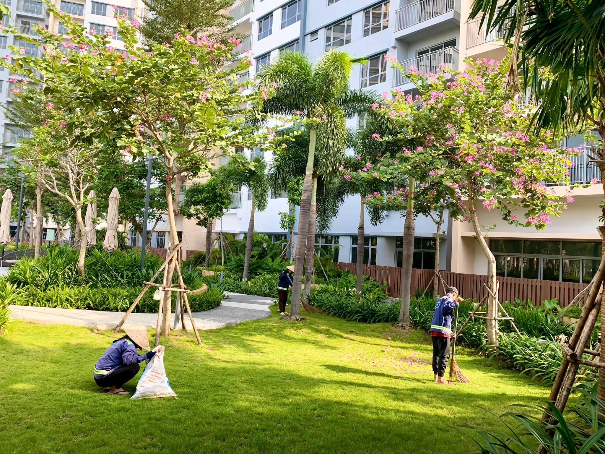 PKD chuyên nhận ký gửi mua bán CH Palm Heights-cập nhật những căn Palm Heights cần sang nhượng gấp.